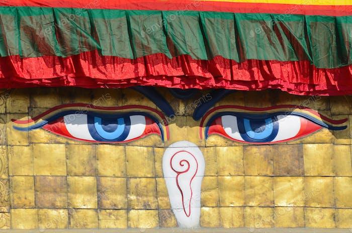 Buddha-Augen