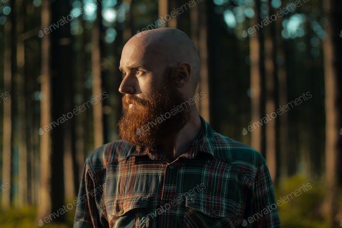 Portait молодой лысый кавказский человек с бородой стоя в лесу глядя подальше от камеры