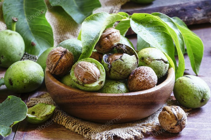 Fresh walnuts in a green shell with leaf