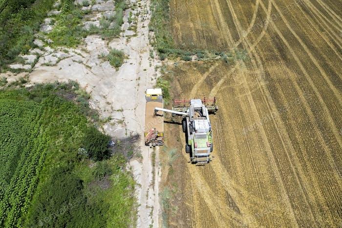 Landwirtschafts-Szene.
