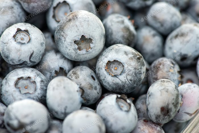 Close up texture of fresh organic blueberries