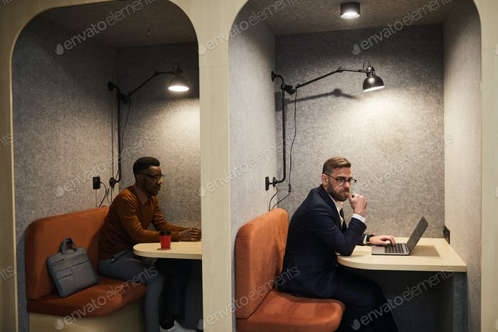 Business People Working in Separate Cafe Booths