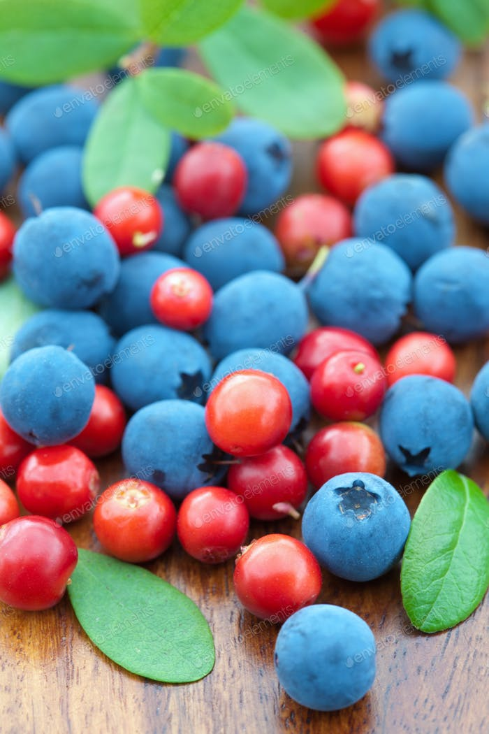 fresh wild berries