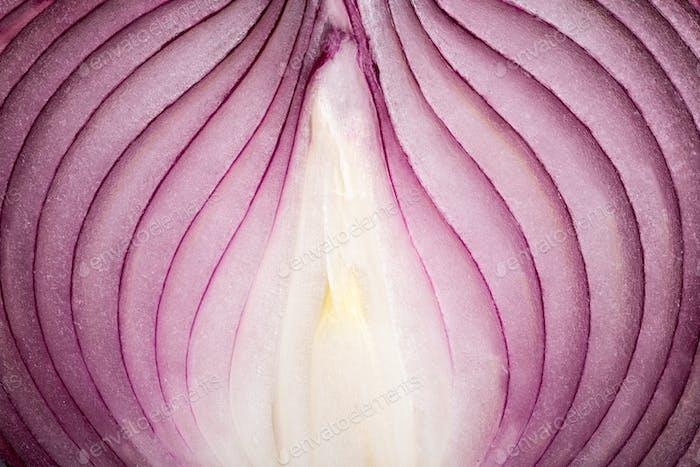 Ripe onion macro