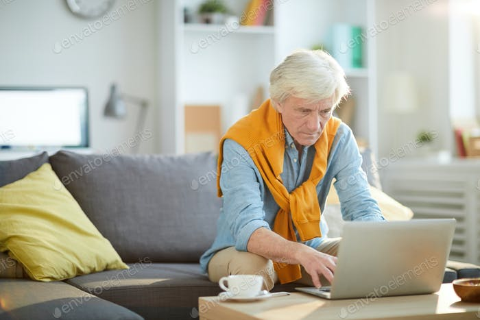 Contemporary Mature Person Using Laptop