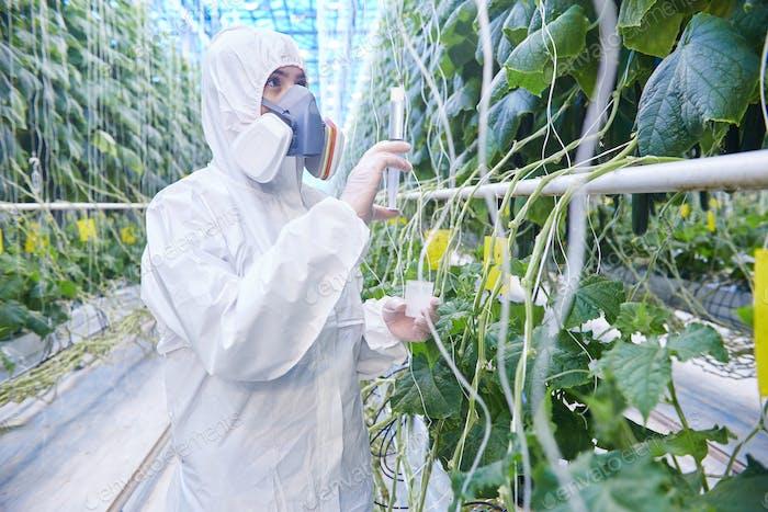 Worker in Hazmat Suit in Greenhouse