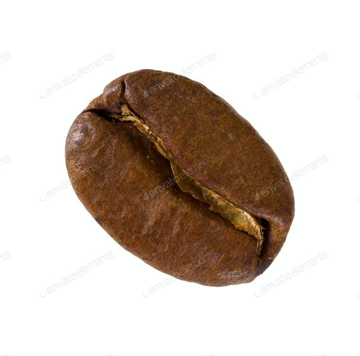 One grain of coffee