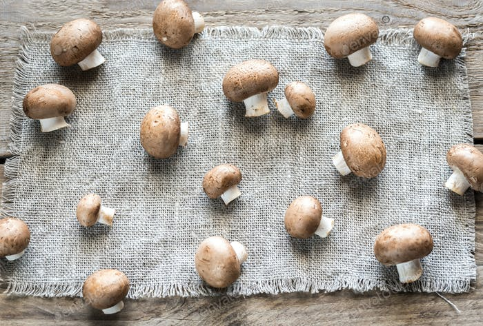 Brown champignon mushrooms on the canvas