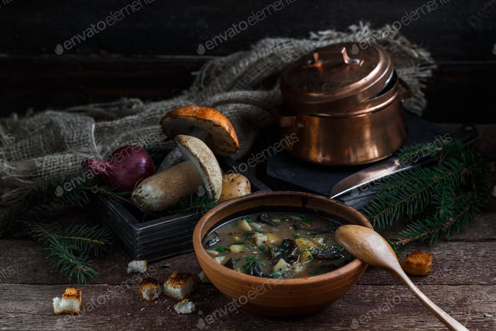 Mushroom soup in ceramic bowl with a copper pan and mushroom in background, dark photo.