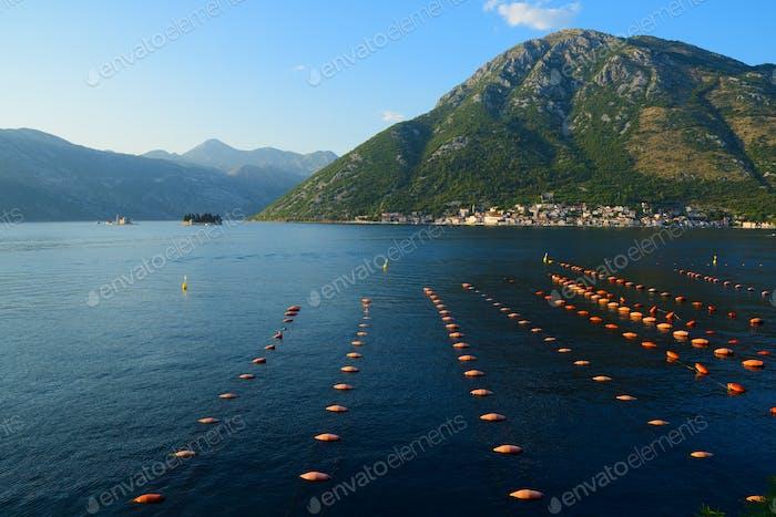 Mussel farm in Bay of Kotor near town Perast, Montenegro