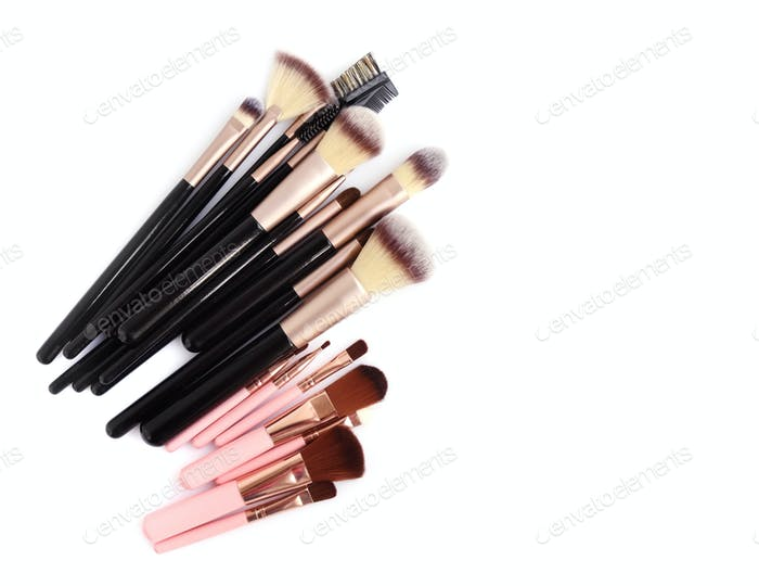 Set of essential professional make-up brushes are isolated with