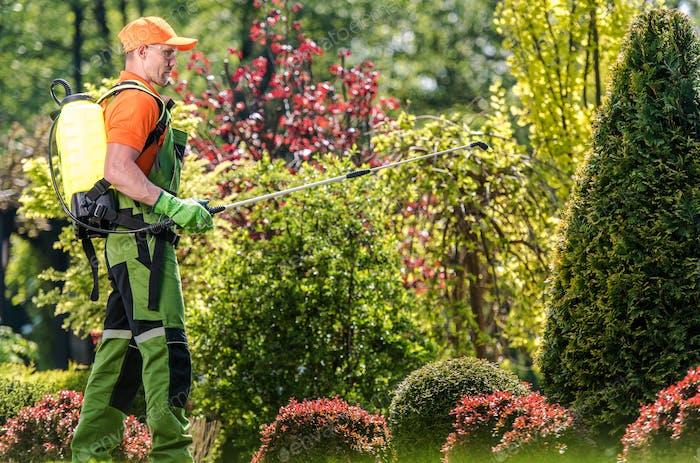 Gardener Applying Fertiliser
