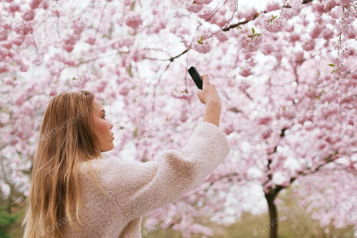 Young woman shooting blossom flowers with her mobile phone