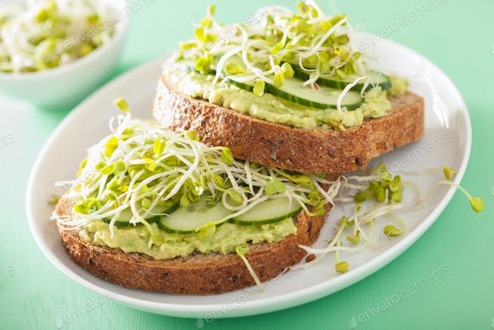 healthy rye bread with avocado cucumber radish sprouts