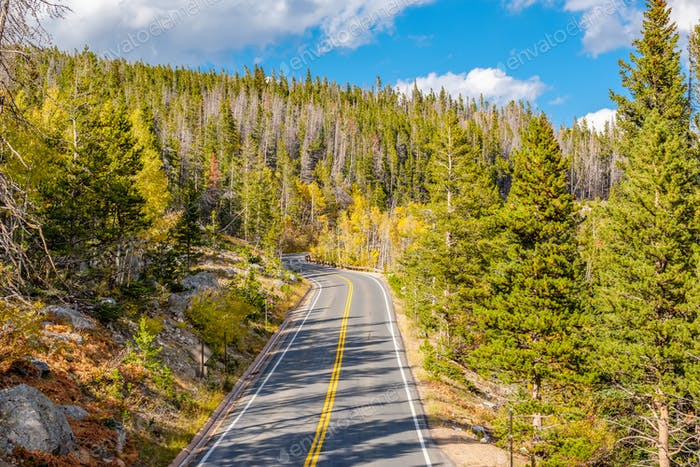 Thumbnail for Highway at autumn in Colorado, USA.