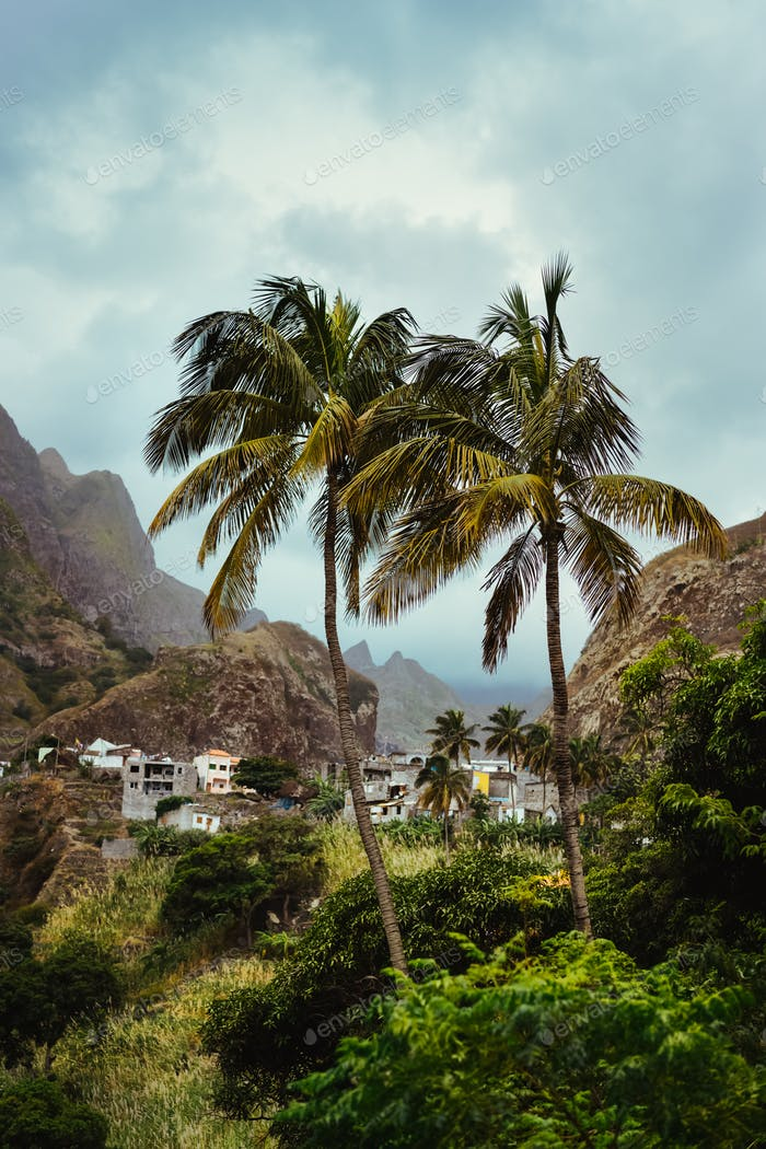 Santo antao, cape verde. Landscape with palm trees and houses of self-construction, in the coastal