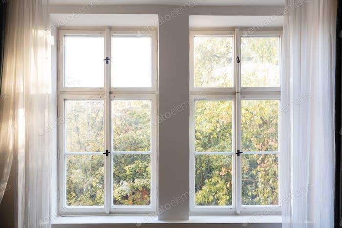 Herbstsaison. Bäume mit Herbstlaub aus zwei geschlossenen weißen Holzfenstern.