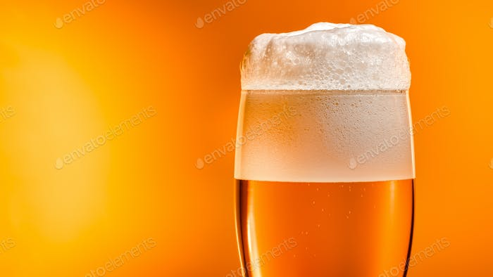 Lager beer settles in the glass with a white cap of foam