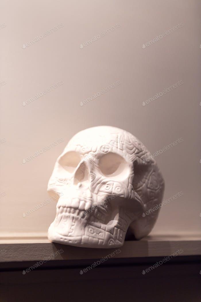 White Decorative Skull on shelf