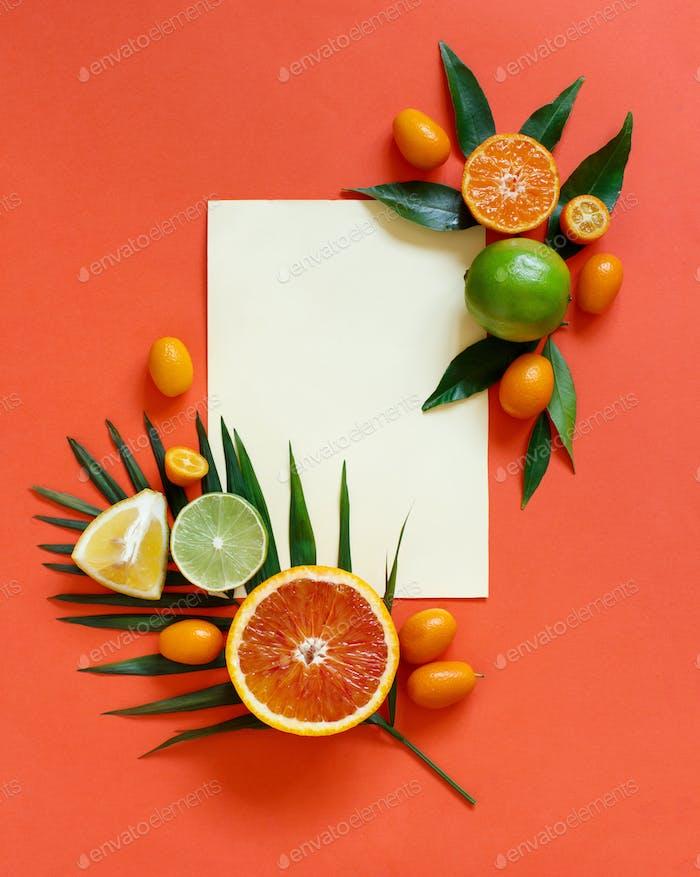 Placeit — Zitrusfrüchte auf korallenrotem Hintergrund