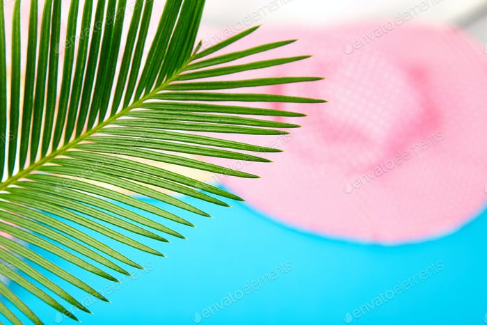 Summer outfit blurred. tropical palm leave