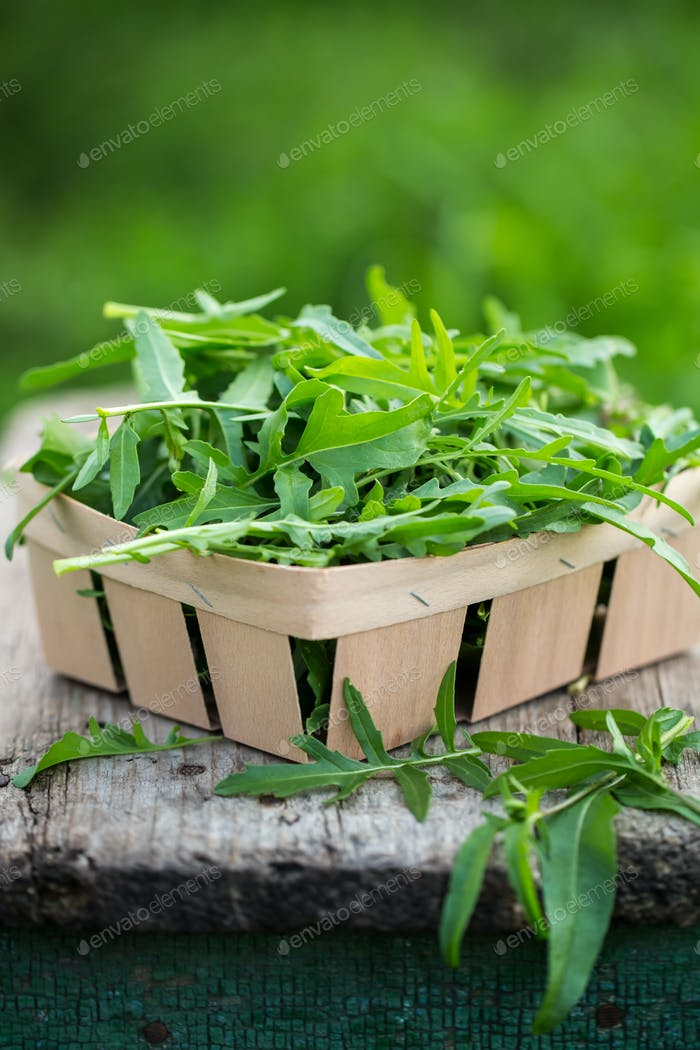 Fresh arugula in a wooden box