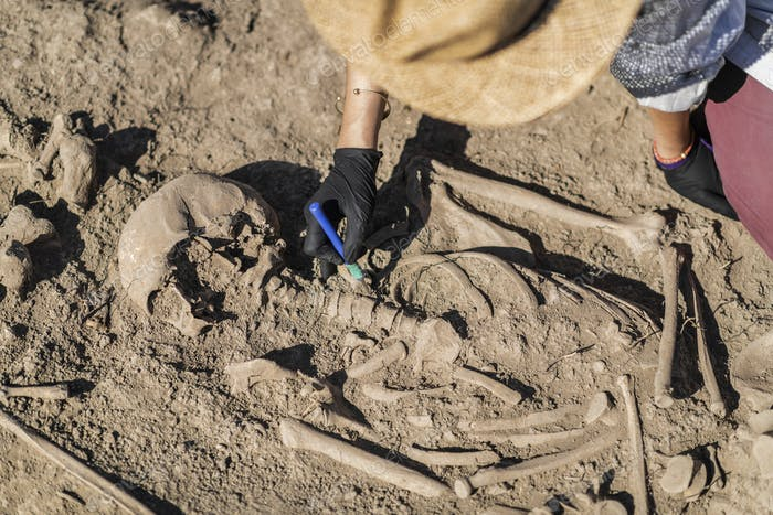 Archaeological Excavations of an Ancient Human Skeleton