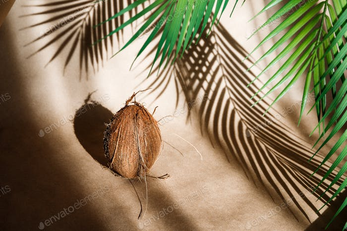Summer abstract creative composition with a coconut and palm leaf against kraft paper.