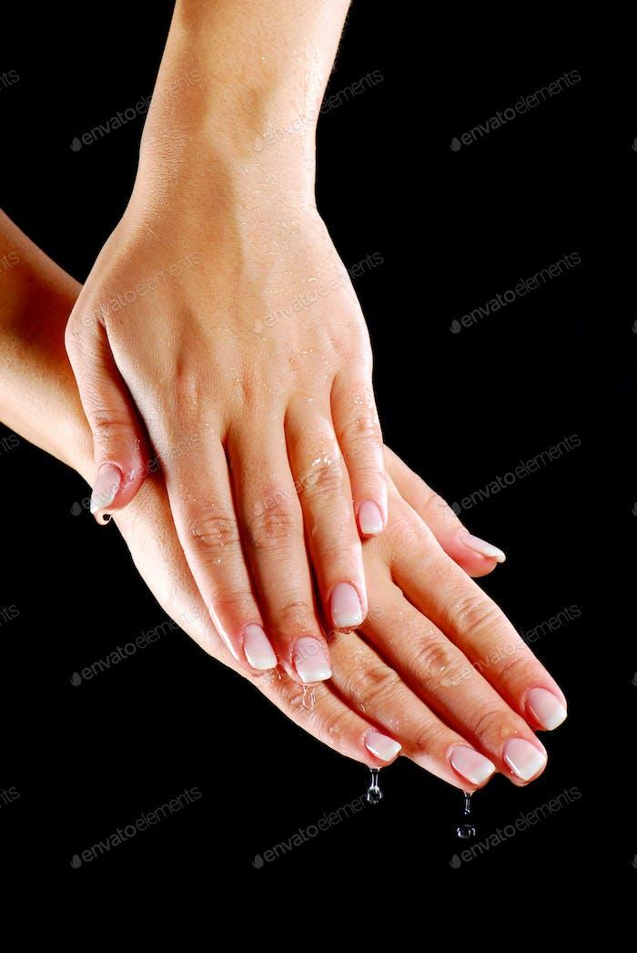 elegance female hands