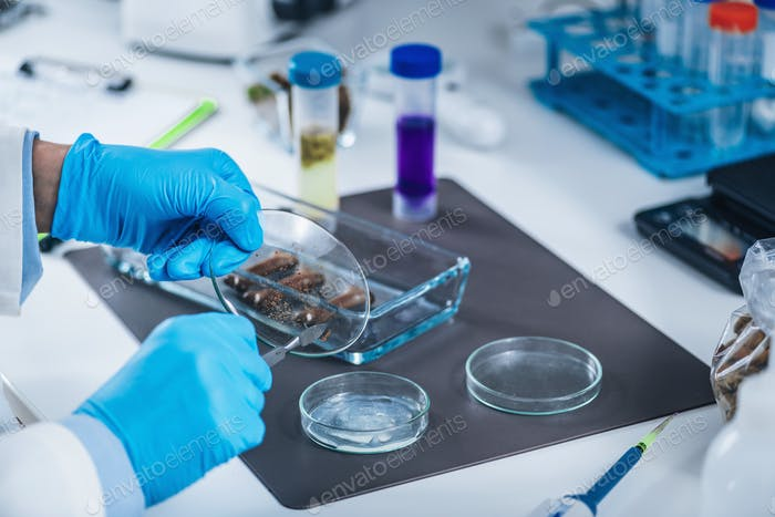Sample Preparation of Dog Biscuit for Pet Food Quality Control in Laboratory