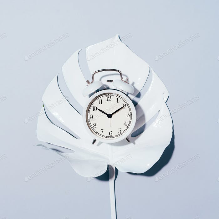 White alarm clock and monstera leaf over grey background with copy space. Top view. Flat lay. Wake