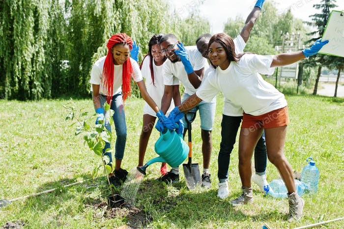 Africa volunteering, charity, people and ecology