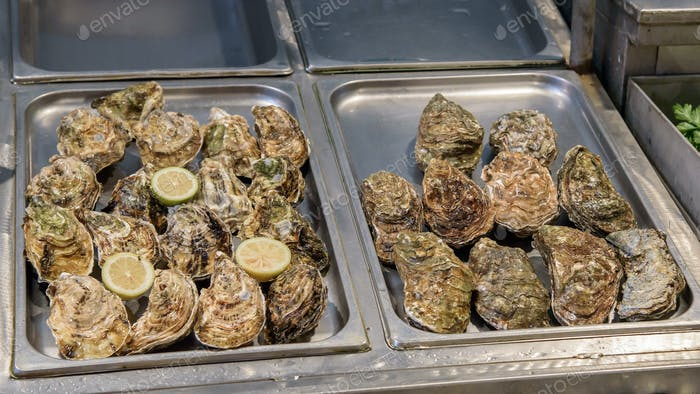 Fresh oysters on the fish market