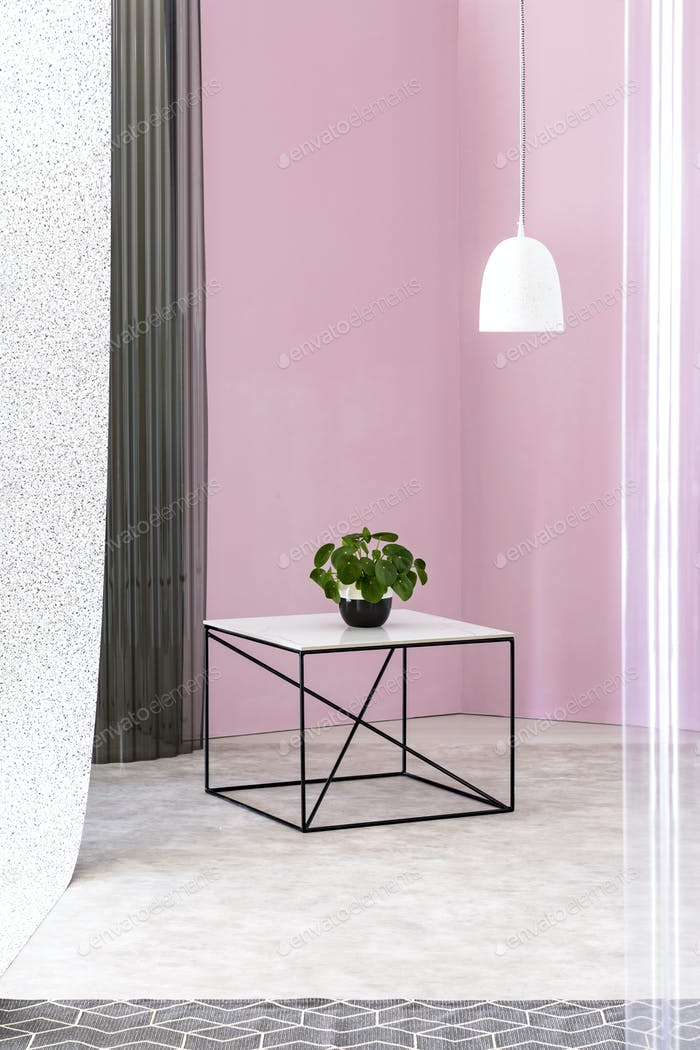 Green plant on a black industrial table with marble countertop a