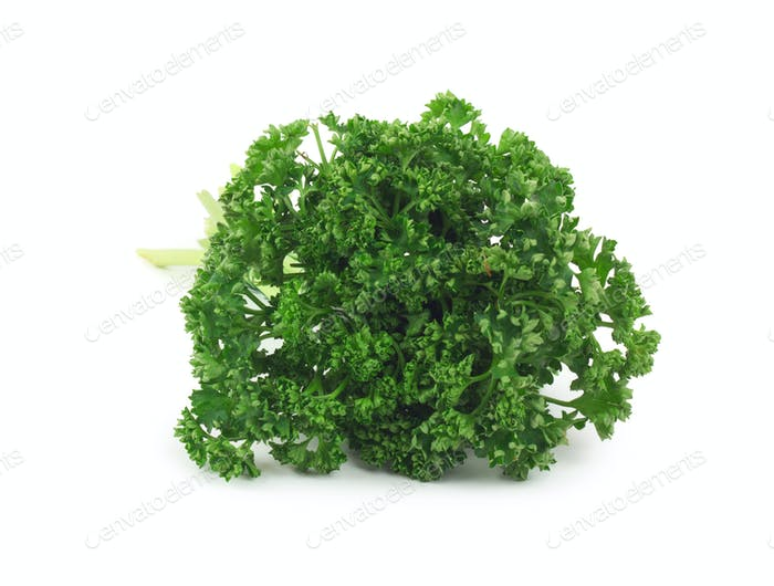 Bunch of fresh green parsley isolated on white background