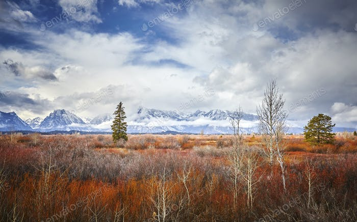 Autumn landscape in the Grand Teton National Park, Wyoming, USA