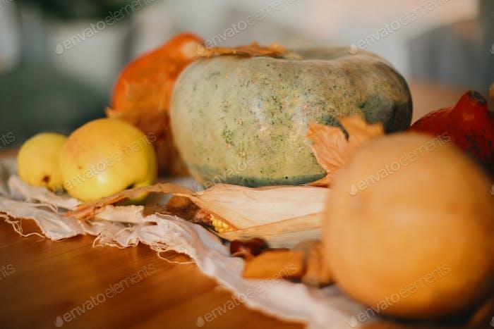 Pumpkins, autumn leaves, walnuts,chestnuts, corn, apple and pear