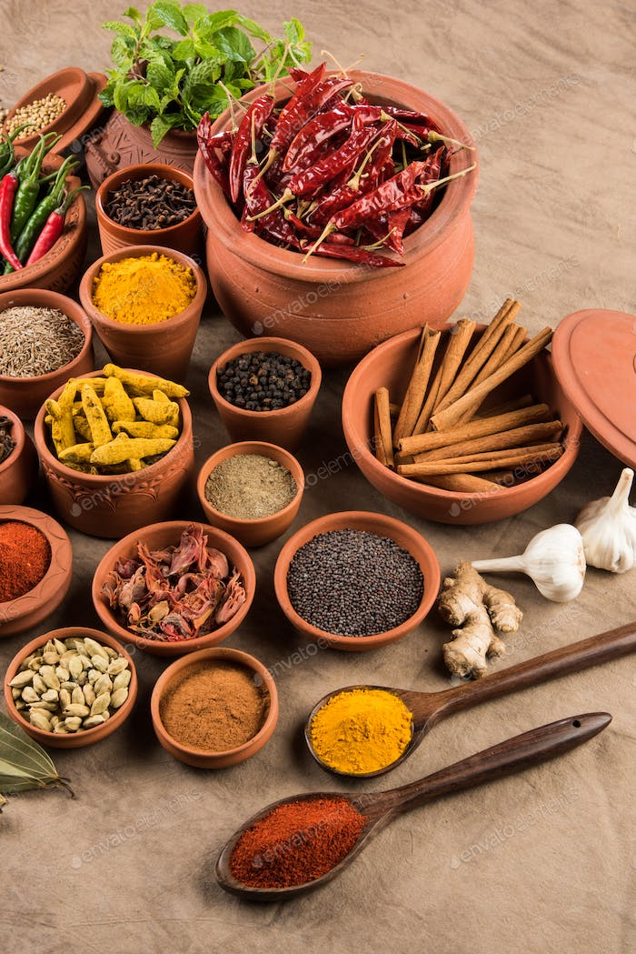 Indian essential spices in terracotta pots