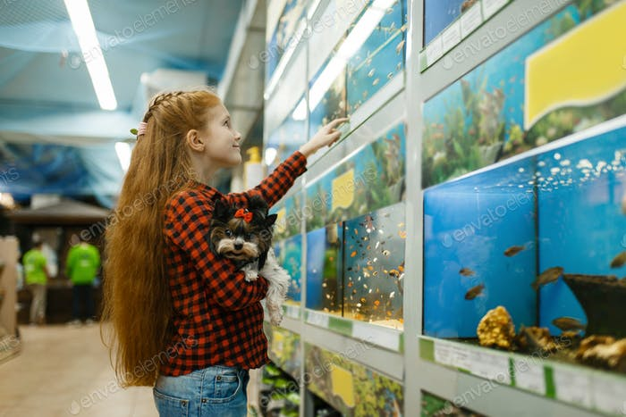 Girl looking on fishes in aquarium, pet store
