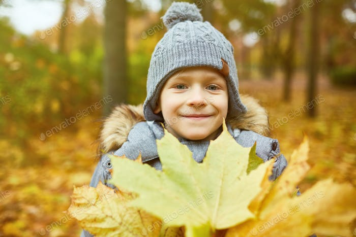 Boy with yellow leaves