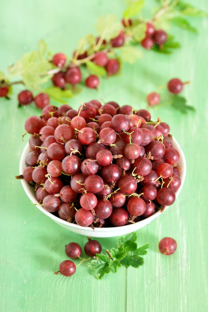 Red gooseberries in white bowl