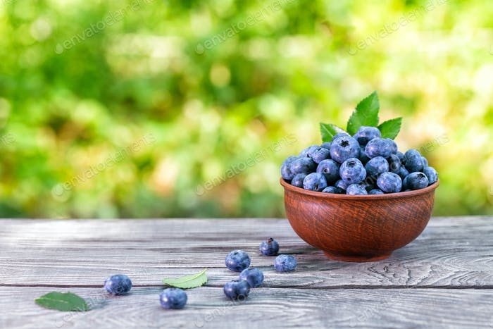Blueberry berries in clay bowl
