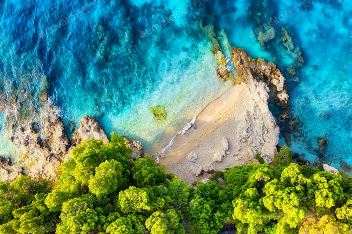 Sea shore with forest a background, Croatia. Aerial landscape at the summer time