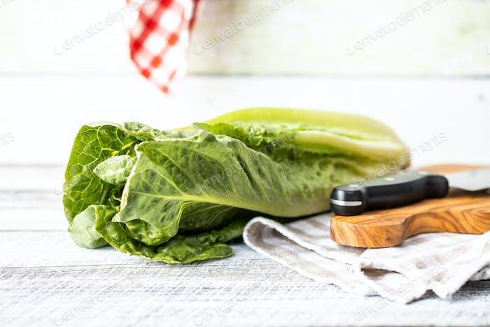 Fresh green Romaine Lettuce. Leaves of Lactuca sativa.