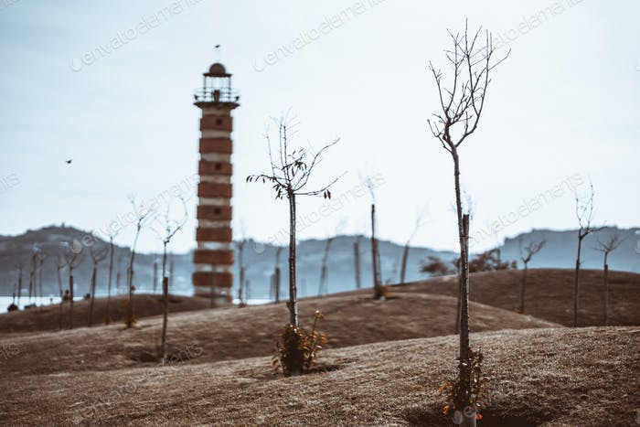 Landscaped garden with a lighthouse