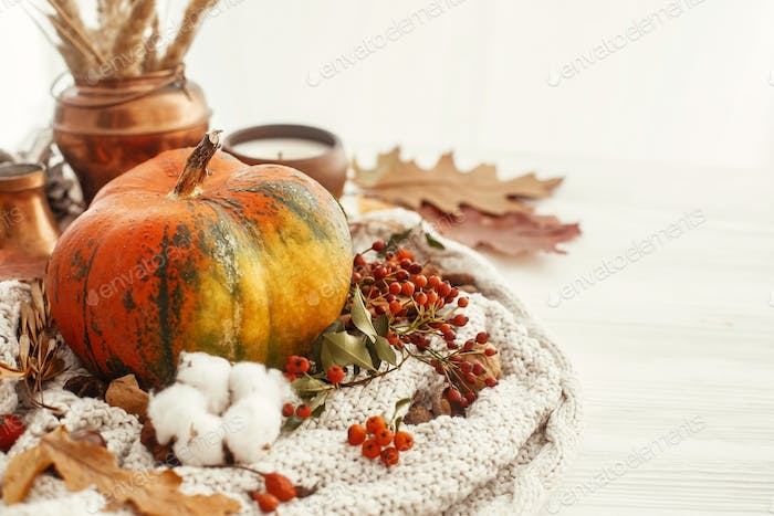 Pumpkin, candle, fall leaves, berries, nuts, acorns, cotton
