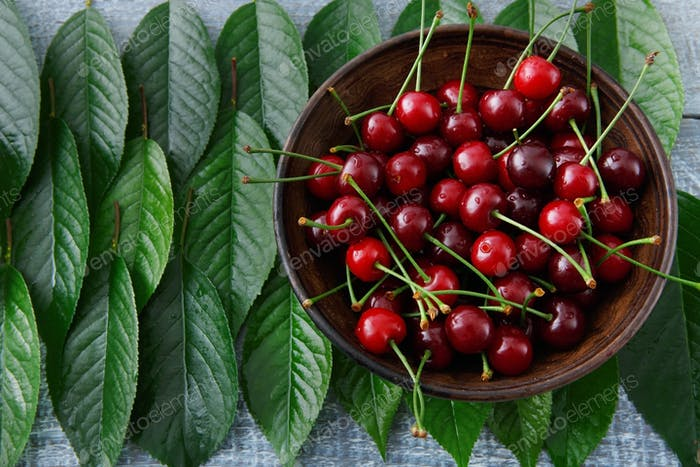 Sweet fresh cherries with green leaves on blue rustic wood