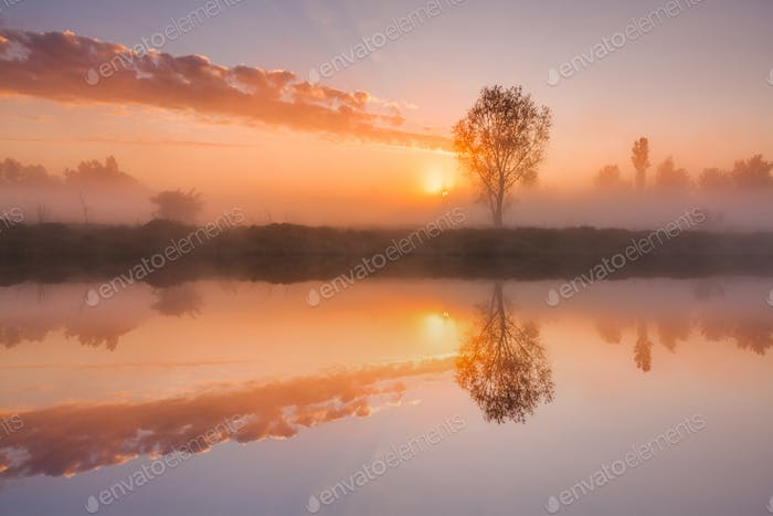 The first rays of the rising sun at misty river