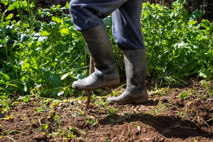 Der Mensch gräbt Frühlingsboden mit Spatgabel. Arbeit in einem Garten