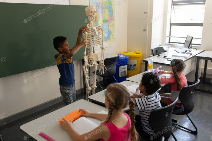 Side view of schoolboy explaining human skeleton model in classroom of elementary school